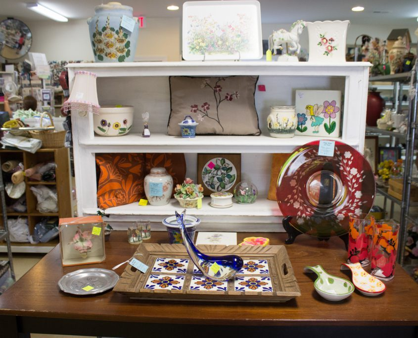 Thrift Store Blue Ridge Humane Society Hendersonville NC