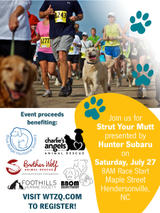 event flyer for strut your mutt