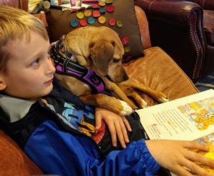 boy sits on couch reading to medium sized light brown dog