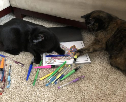 two cats on the floor on top of coloring book with markers spread around.