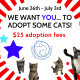Cat adoption promo flyer