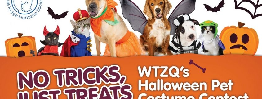 WTZQ Costume Contest Header with animals in costumes