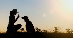 silhouette of a dog and woman sitting on the ground