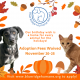 a flyer with fall leaves advertising free adoptions for thanksgiving