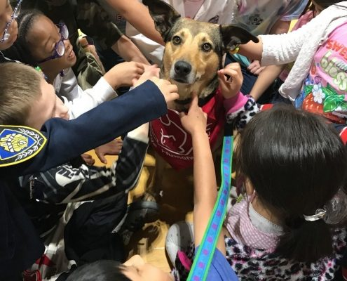 A dog sits in the middle of a group of children as they reach to pet her.