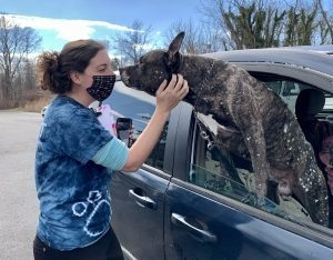 a women with dark hair pets a dog leaning out of a car window