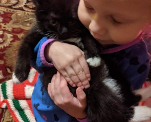 a black kitten with small white markings is held gently by a young child