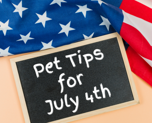 an American flag background with a chalkboard with text reading: Pet tips for July 4th